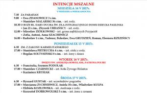 IMG_2432 (1)